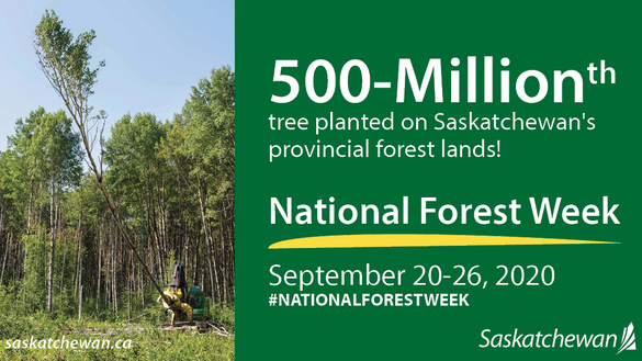 Saskatchewan Celebrates National Forest Week