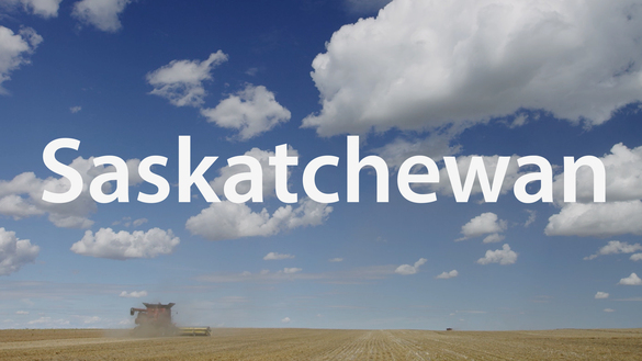 ThinkSask 2020 - Strong. Secure. Saskatchewan.